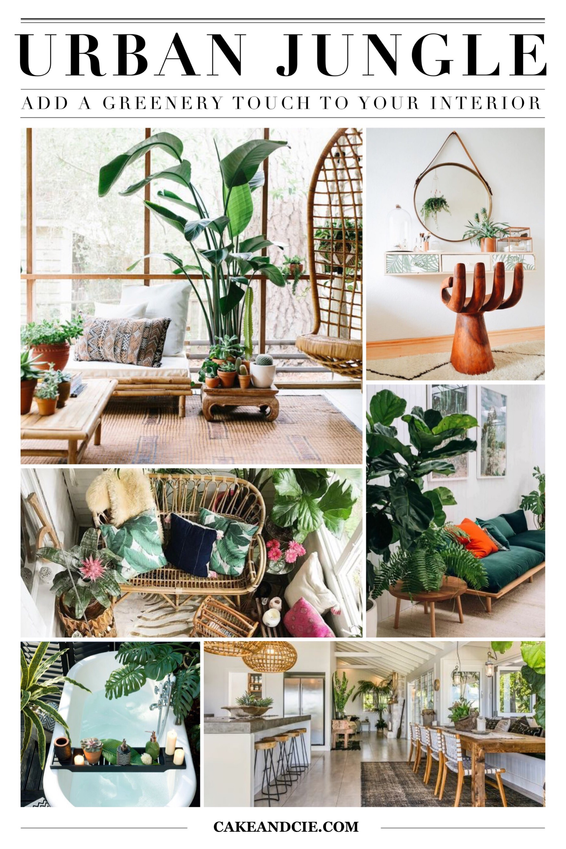 Urban jungle - Add a greenery touch to your interior